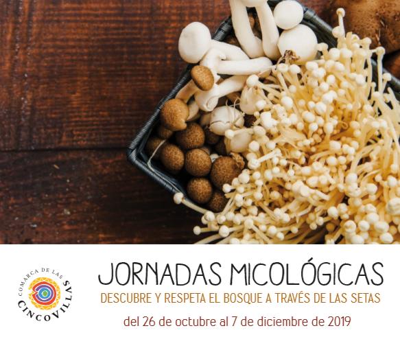 Jornadas micológicas